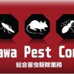 Nakazawa Pest Control|害虫駆除サービス|神奈川県横浜市